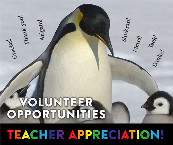 Teacher Appreciation Week, May 1st – 5th